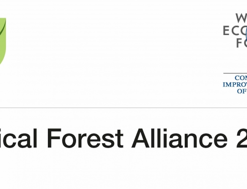 Professional Interpreting at the Tropical Forest Alliance 2020